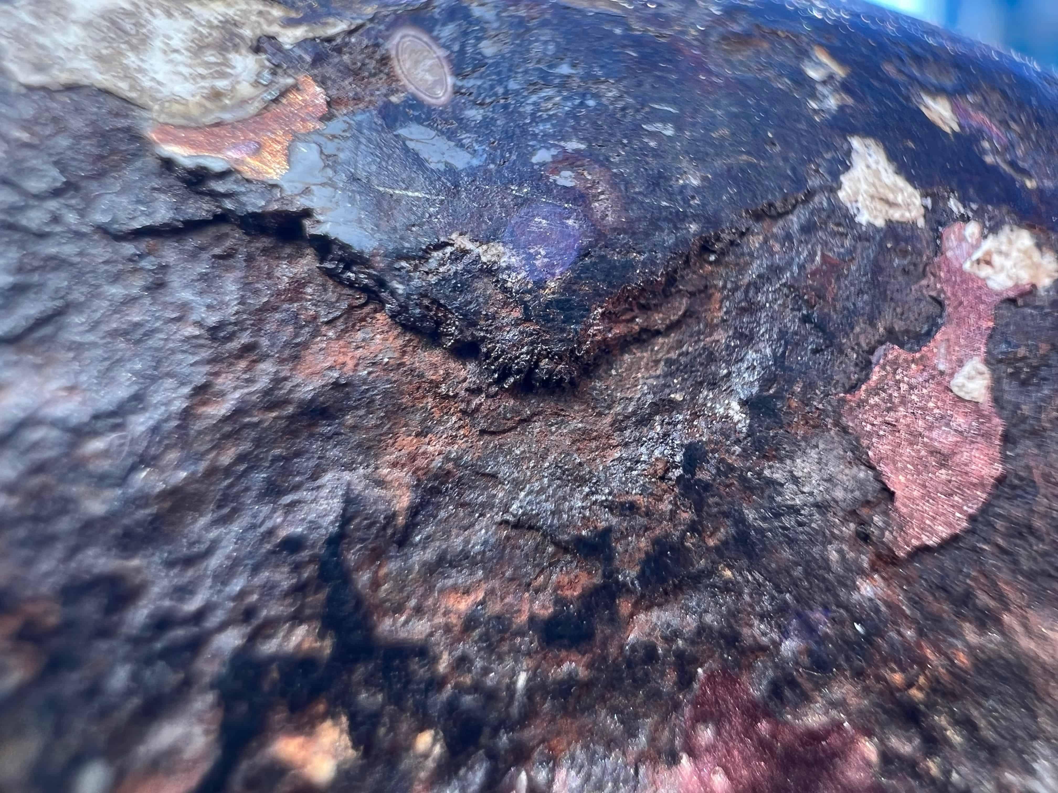 کیفیت دوربین ماکرو ایفون 13 پرو