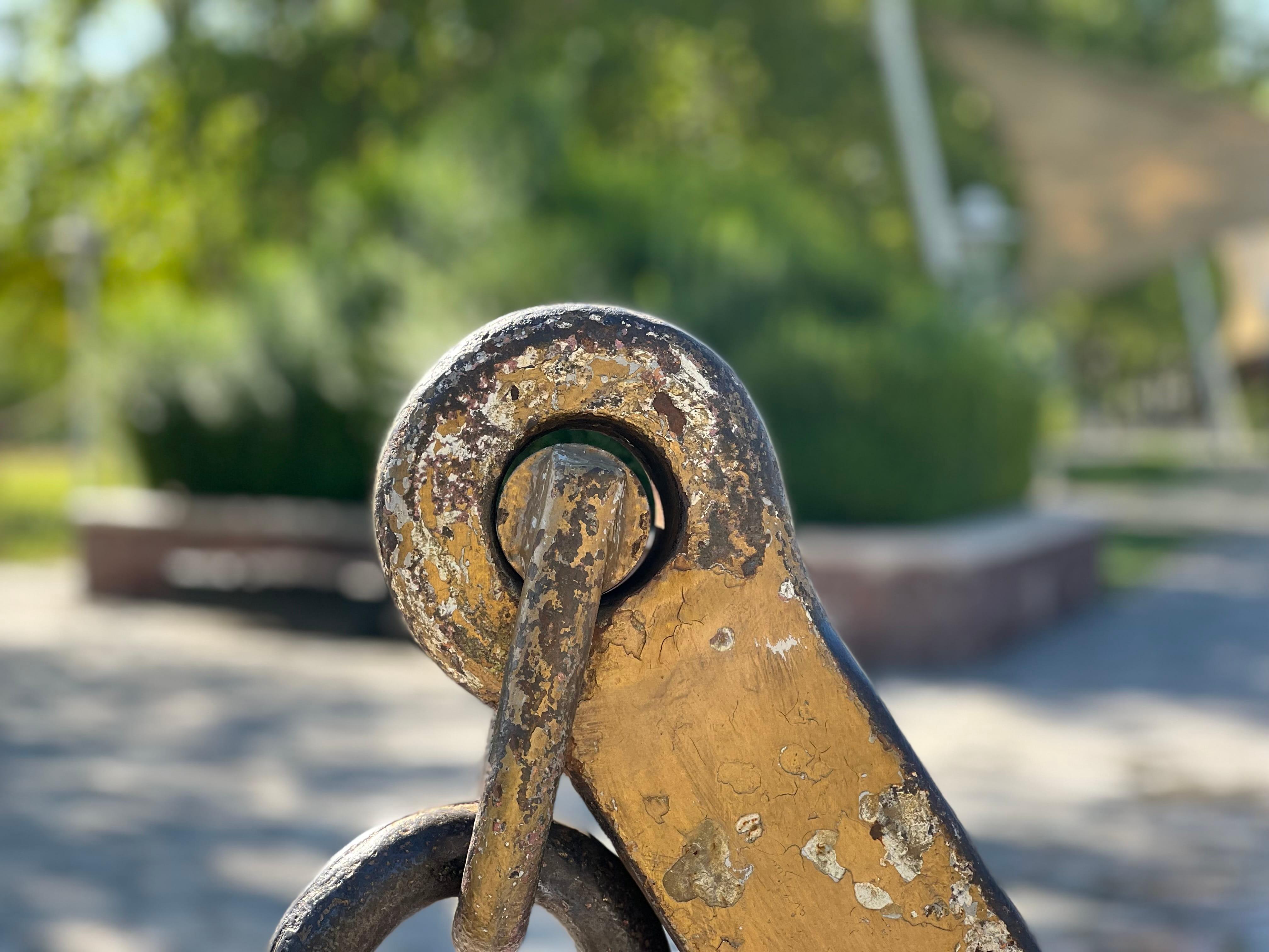 نمونه عکس پرتره دوربین ایفون 13 پرو